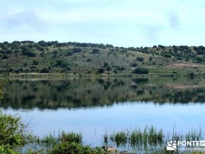 Embalse Pedrezuela; ruta a pie madrid; rutas la pedriza senderismo; foro de senderismo